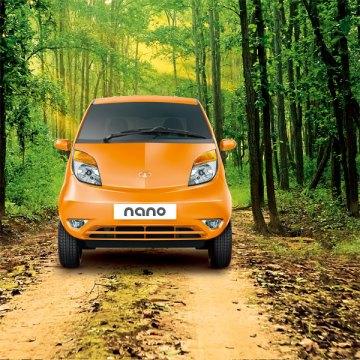 Tata Nano forest